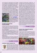 872 - Rondom de Toren - Page 6