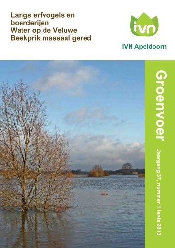 Groenvoer - Apeldoorn