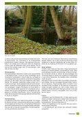 Groenvoer - Apeldoorn - Page 7