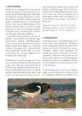 Skådarguide till Varbergs fågellokaler (10 MB) - Page 4