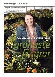 Johannah – parkingenjör - Falu Kommun