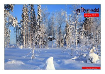 Byabladet Vintern 2012 - Roknäs/Stockbäckens byaförening
