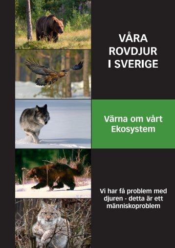 Läs PDF