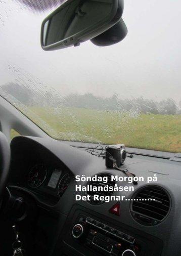 Söndag Morgon på Hallandsåsen Det Regnar……….. - physiochraft