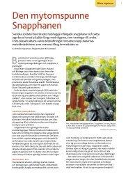 Den mytomspunne Snapphanen