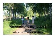 Meny skola våren 2013 - Hammarö kommun
