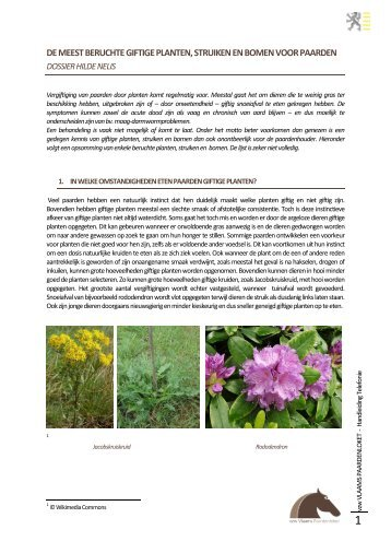 Giftige planten, struiken en bomen - Dossier Hilde Nelis - Vlaams ...