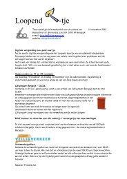 loopend vuurtje 14-11-12.pdf - SKOzoK