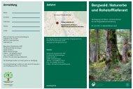 Bergwald: Naturerbe und Rohstofflieferant - Bayerische Staatsforsten