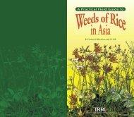 A Practical Field Guide to - IRRI books - International Rice Research ...