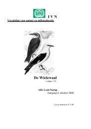 de Wielewaal oktober 2008.pdf - IVN