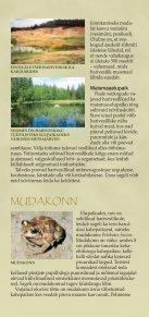HARIVESILIK - Keskkonnaministeerium - Page 4