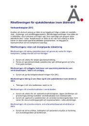 Verksamhetsplan 2013 - Svensk sjuksköterskeförening