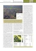 Artikel Lippenbroek Natuur.focus - Page 4