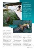 Read article (pdf - 721 KB) - Jens Bursell - Page 4