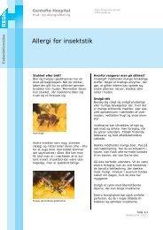 Allergi for insektstik - EPIS - Gentofte Hospital
