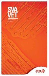 SVAvet nr 3 2011, Tema: diagnostik