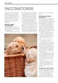 HUNDEHVALPENS SUNDHED - Dyrefondet - Page 4