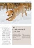 HUNDEHVALPENS SUNDHED - Dyrefondet - Page 7