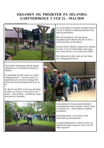 Eksamen og afgangsprojekter maj 2010 - Selandia CEU