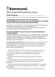 Handlingsplan för gravida och ammande - Kommunal