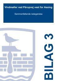 Bilag 3 -T21 - Sammenfattende redegørelse - Herning Kommune