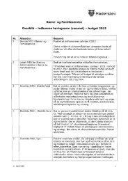 Budget 2013 - Haderslev Kommune