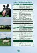 Frøblandinger til heste - Hunsballe Frø A/S - Page 2