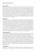 venezia 2013 - Wunderkammer Expo - Page 5