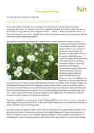20130606 Reijmerstok.pdf - Ivn