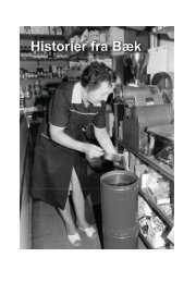 Historier fra Bæk - Nustrup