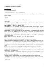 Groppello di Mocasina MI-GROM-8 - Centro Vitivinicolo Provinciale