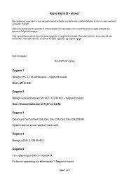 printervenlig pdf udgave