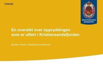 En oversikt over oppryddingen som er utført i Kristiansandsfjorden