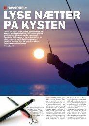 Read article (pdf - 324 KB) - Jens Bursell