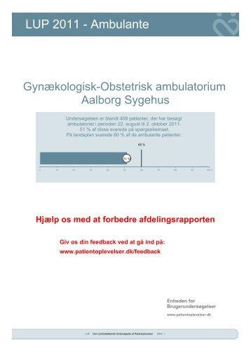 LUP 2011 - Ambulante - Enheden for Brugerundersøgelser