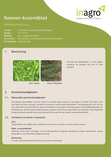 Teeltfiches: kruiden voor gezond vee - Inagro