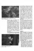 Wenen, een paradijs voor liefhebbers van reptielen en ... - Lacerta - Page 5