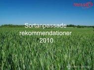 Sortanpassade rekommendationer 2010