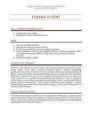 Zadání úloh ke cvičení a principy stereo vidění - FBMI