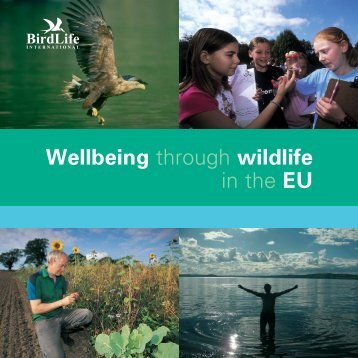 Wellbeing - Euro BM FIN.indd - BirdLife International