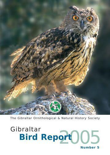 2005 (No 5) - Gibraltar Ornithological & Natural History Society