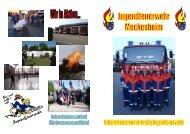 Flyer Jugendfeuerwehr - Feuerwehr Meckesheim
