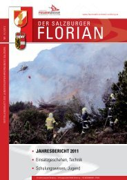 Florian 01/2012 - Landesfeuerwehrverband Salzburg