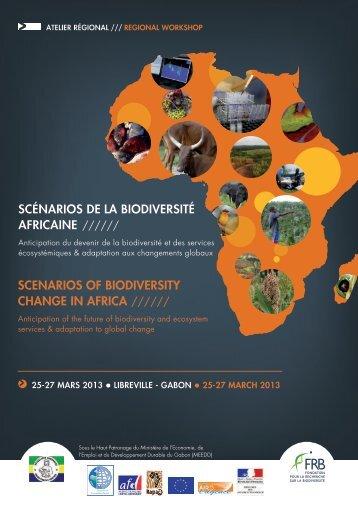 SCÉNARIOS DE LA BIODIVERSITÉ AFRICAINE ... - FFEM