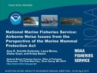 National Marine Fisheries Service: Airborne Noise Issues ... - FICAN