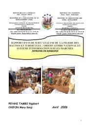 Rapport d'étude sur l'analyse de la filière des racines et ... - FIDAfrique
