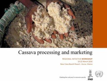Cassava processing and marketing - FIDAfrique