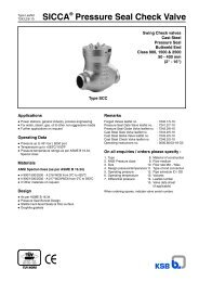 SICCA Pressure Seal Check Valve - Filter