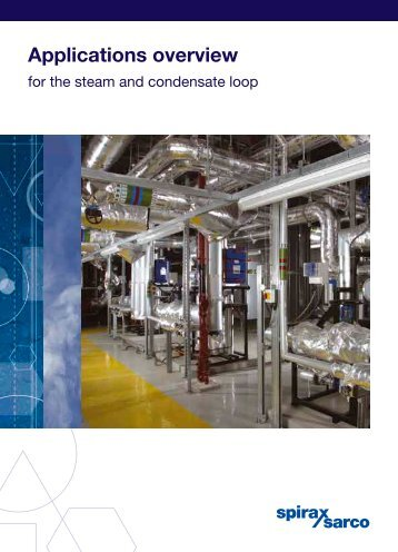 Application overview for the steam and condensate loop - Filter